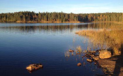 skønt område ved Arvika tæt ved Charlottenberg